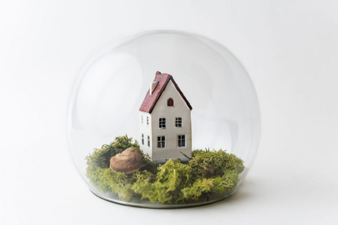 Little concept home in dome