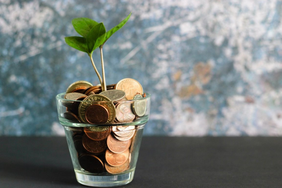 coins growing plant from cup